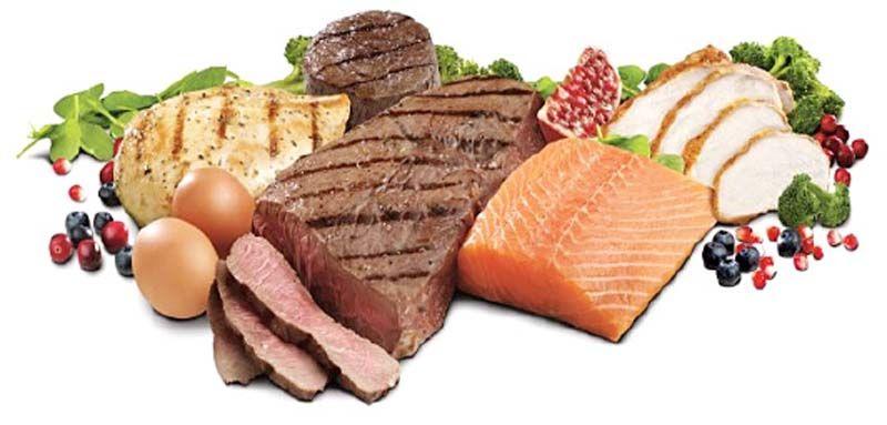Protein โปรตีน