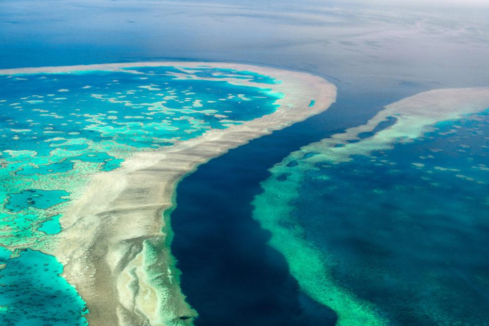 แครนส์ (Cairns) รัฐควีนส์แลนด์ (Queensland)