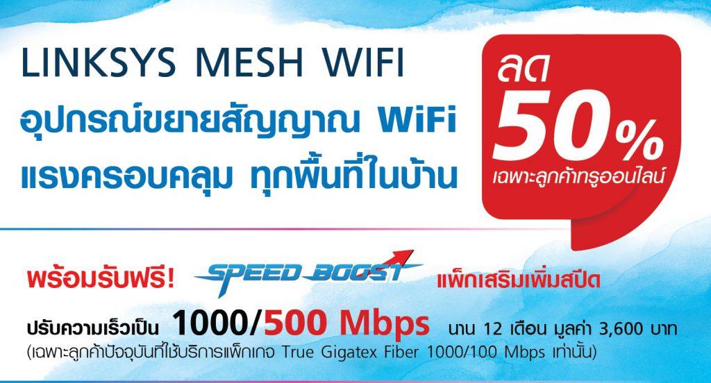 True Gigatex Fiber + Linksys Mesh WiFi